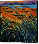 Haida Gwaii Sunrise Canvas Print by Faye Dietrich