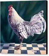 Hamburger Rooster Canvas Print