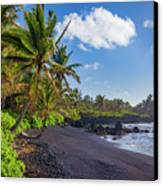 Hana Bay Palms Canvas Print by Inge Johnsson