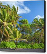 Hana Palm Tree Grove Canvas Print by Inge Johnsson