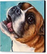 Happy Boxer Dog Canvas Print