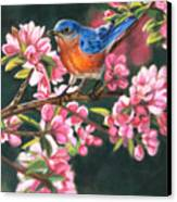 Harbingers Of Spring Canvas Print by Deb LaFogg-Docherty
