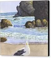 Harris Beach Canvas Print