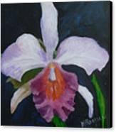 Hartford Orchid Canvas Print