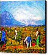 Harvest Time Canvas Print by Michael Durst