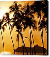 Hawaiian  Cruise Canvas Print