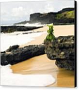 Hawaiian Offering On Beach Canvas Print