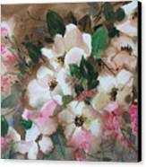Hawthorne Beauties Canvas Print