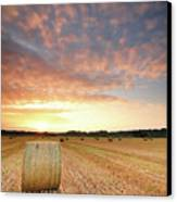 Hay Bale Field At Sunrise Canvas Print by Stu Meech