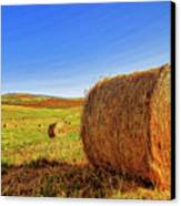 Hay Bales Canvas Print by Dominic Piperata