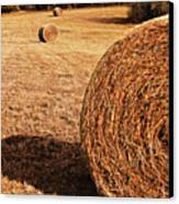 Hay In The Field Canvas Print