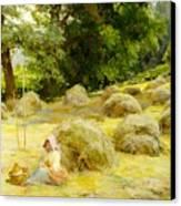 Haytime Canvas Print by Rosa Appleton