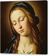 Head Of The Madonna Canvas Print