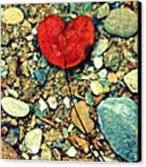Heart On The Rocks Canvas Print