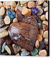 Heart Stone Among River Stones Canvas Print by Garry Gay