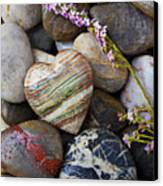 Heart Stone With Wild Flower Canvas Print