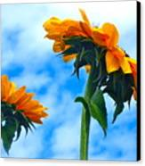 Heaven Above ... Canvas Print by Gwyn Newcombe