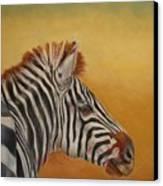 Hello Africa Canvas Print