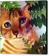 Hide And Seek Cat Canvas Print