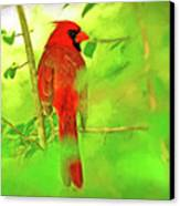 Hiding Behind The Leaves - Male Cardinal Art Canvas Print