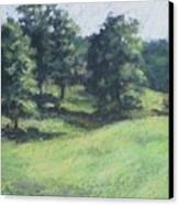 High Summer Pasture Canvas Print