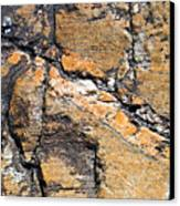 History Of Earth 4 Canvas Print by Heiko Koehrer-Wagner