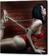 Hogtied - Fine Art Of Bondage Canvas Print