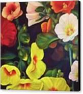 Hollyhocks 2 Canvas Print by Dana Redfern