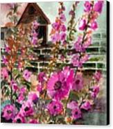 Hollyhocks And Barn Canvas Print