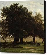 Holm Oaks Canvas Print by Pierre Etienne Theodore Rousseau
