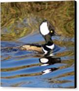 Hooded Mersanger Canvas Print