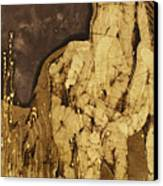 Horse Above Stones Canvas Print by Carol  Law Conklin