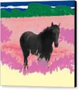 Horse In A Dreamfield 7 Canvas Print