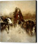 Horse Spirit Guides Canvas Print