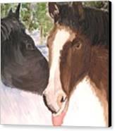 Horse Whisperer Canvas Print
