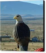 Hot Air Eagle Canvas Print