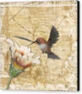 Hummingbird And Wildflower Canvas Print