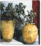 I Vasi Canvas Print by Guido Borelli