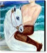 I Viking Canvas Print