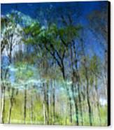 Ichetucknee Reflections Canvas Print