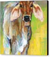 Im All Ears Canvas Print by Frances Marino