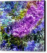 Impressions From The Garden Canvas Print