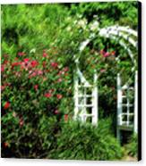 In The Garden Canvas Print by Carolyn Marshall