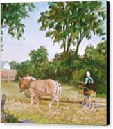 In The Hayfield Canvas Print