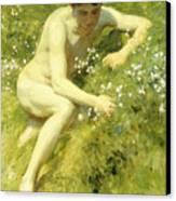 In The Meadow Canvas Print by Henry Scott Tuke