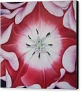 Inner Faz Canvas Print