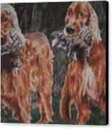 Irish Setters Canvas Print