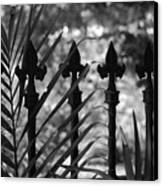 Iron Fence Canvas Print