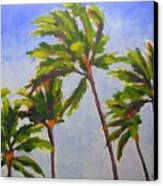 Island Palms Canvas Print