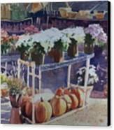 Ivy Corners Canvas Print by Elizabeth Carr